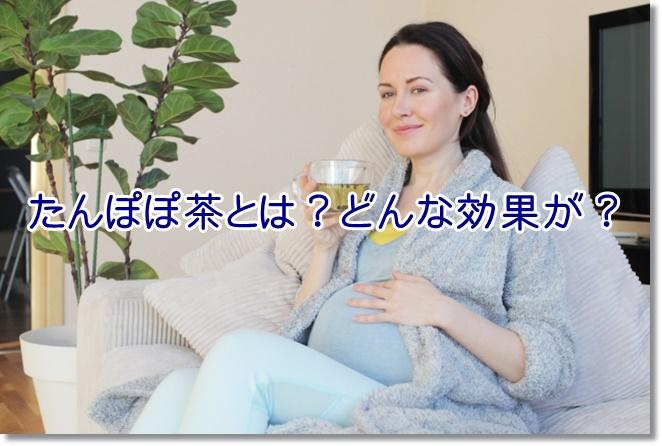 妊婦さんに大人気のたんぽぽ茶とは?どんな効果が?