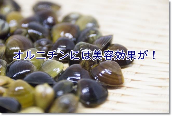 オルニチンには美容効果が!シミやシワの少ない日本一は島根!