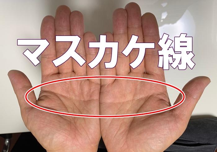 手は本当に神秘性豊か!管理人は両手にマスカケ線があります。